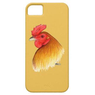 Peine del guisante del macho del gallo de pelea iPhone 5 carcasa