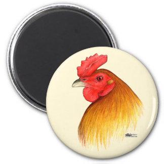 Peine del guisante del macho del gallo de pelea imán redondo 5 cm