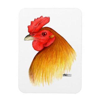 Peine del guisante del macho del gallo de pelea imanes flexibles