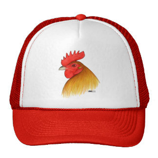 Peine del macho del gallo de pelea solo gorra