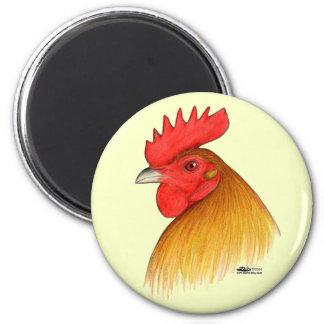 Peine del macho del gallo de pelea solo imán redondo 5 cm
