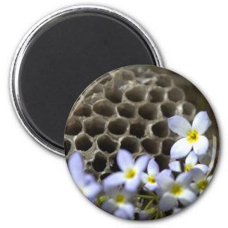 Peine y flores de la colmena de la abeja imanes para frigoríficos