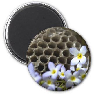 Peine y flores de la colmena de la abeja iman para frigorífico