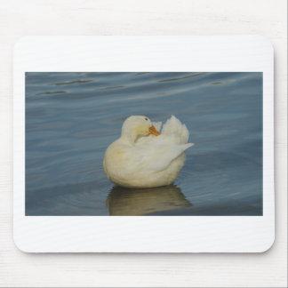 Pekin Duck VI Mouse Pad