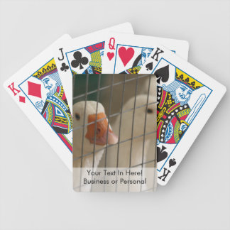 Pekin ducks in cage picture bicycle playing cards