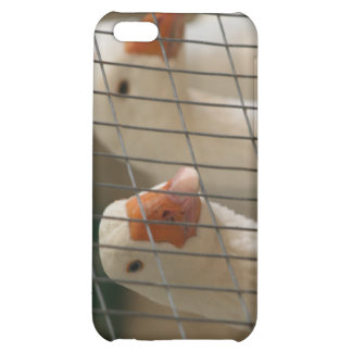 Pekin ducks in cage picture cover for iPhone 5C