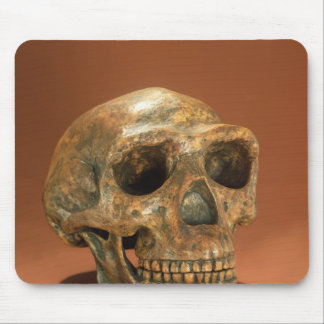 Peking Man s reconstructed skull Mouse Pads