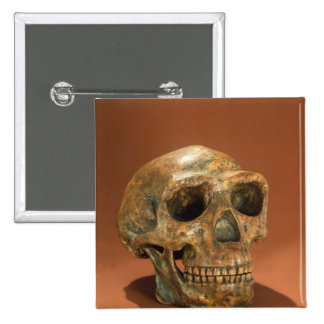 Peking Man's reconstructed skull Pinback Button