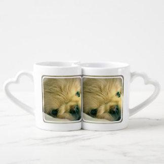 pekingese-7 tazas amorosas