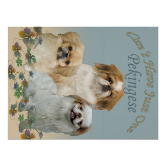 Pekingese Can't Have Just One Poster