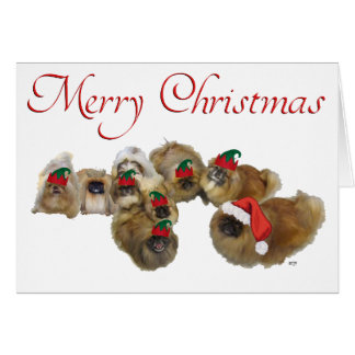 Pekingese Celebrate Christmas Greeting Card