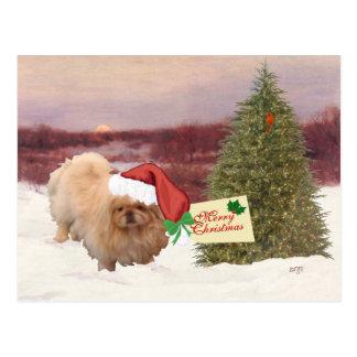 Pekingese Christmas Post Cards