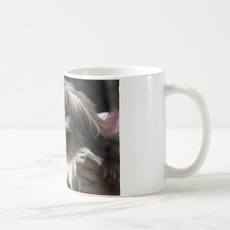 Pekingese dog coffee mug