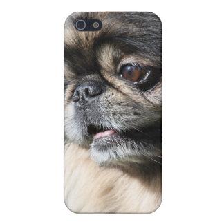 Pekingese dog cover for iPhone SE/5/5s