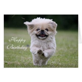 Pekingese dog custom birthday card, cute photo card