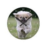 Pekingese dog cute beautiful photo, happy running round wall clocks