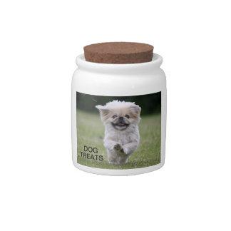 Pekingese dog, dog treats jar, cute photo, gift candy jar