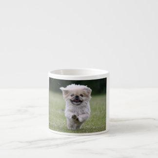 Pekingese dog espresso mug, cute photo, gift espresso cup