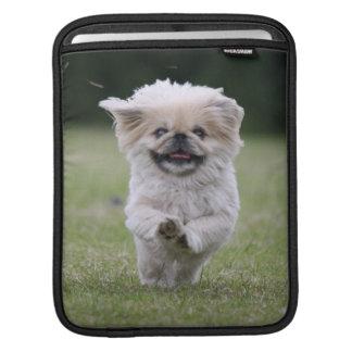 Pekingese dog ipad sleeve, cute photo, gift sleeve for iPads