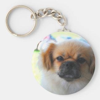 Pekingese Dog Key Chain