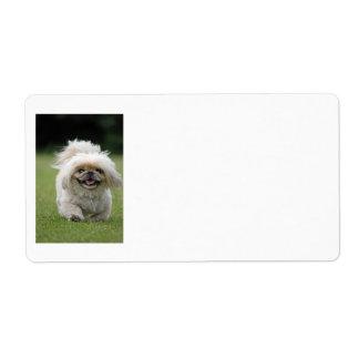 Pekingese dog labels