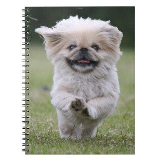 Pekingese dog notebook, cute photo, gift notebook