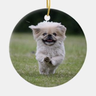 Pekingese dog ornament, cute photo, gift ceramic ornament