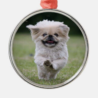 Pekingese dog ornament, cute photo, gift metal ornament