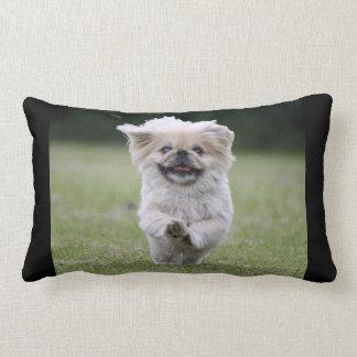 Pekingese dog pillow, cute photo cushion