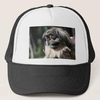 Pekingese dog trucker hat