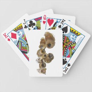 Pekingese Group Bicycle Playing Cards
