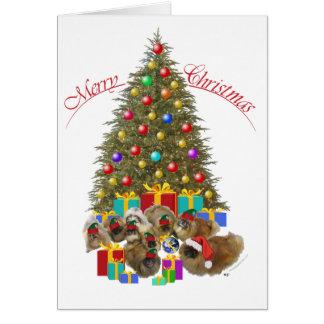 Pekingese Group Celebrates Christmas Card