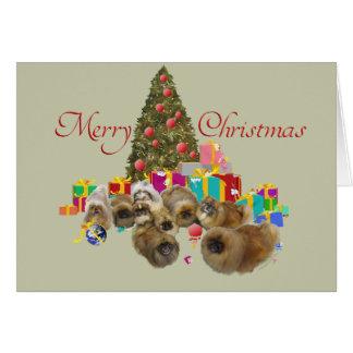 Pekingese Group Celebrates Christmas Greeting Cards