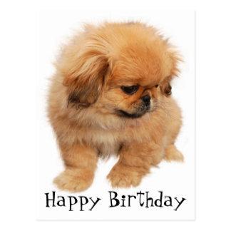 Pekingese Happy Birthday Puppy Dog Black Postcard
