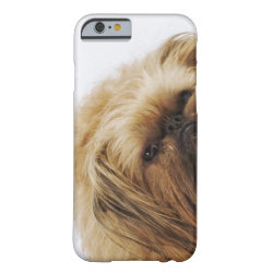 Case-Mate Barely There iPhone 6 Case with Pekingese Phone Cases design