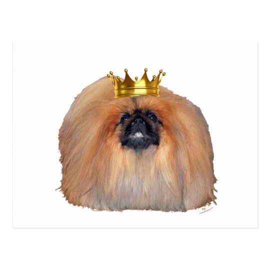 Pekingese King (Customize if you Wish!) Postcard