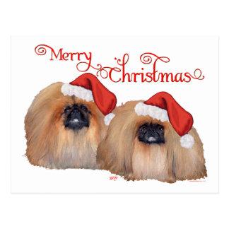 Pekingese Merry Christmas Postcard