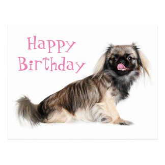 Pekingese Pink Happy Birthday Puppy Dog Postcard