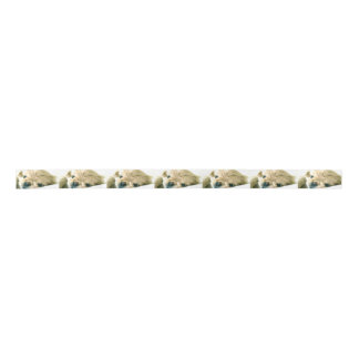 Pekingese Puppies Satin Ribbon
