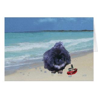 Pekingese Puppy at the Beach Card