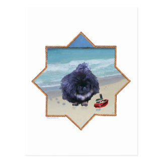 Pekingese Puppy at the Beach Postcard