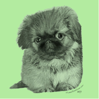Pekingese Puppy Green Cutout