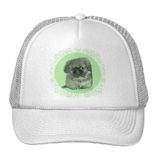 Pekingese Puppy Green Trucker Hat