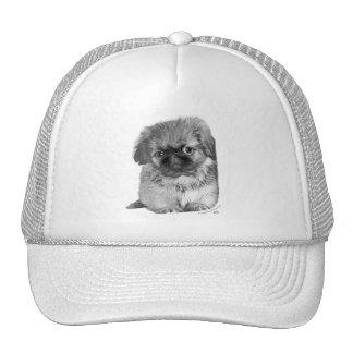 Pekingese Puppy Hat
