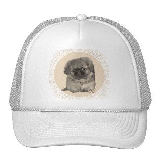 Pekingese Puppy Trucker Hat
