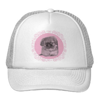 Pekingese Puppy in Pink Mesh Hats