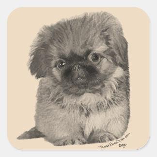 Pekingese Puppy Square Sticker