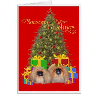 Pekingese Royalty Celebrate Christmas Greeting Cards