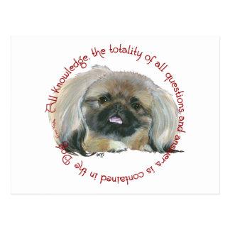 Pekingese Wisdom - All Knowledge in the Dog Postcard