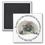 Pekingese Wisdom - Having a Dog makes you Rich 2 Inch Square Magnet